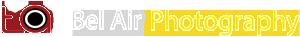 Website Logo D